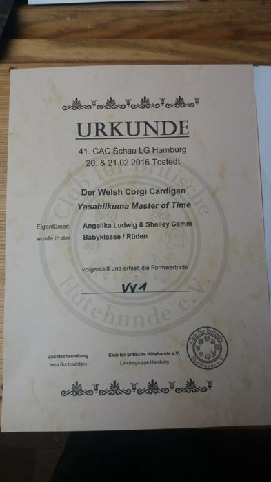 Certificate 20160220 - Germany