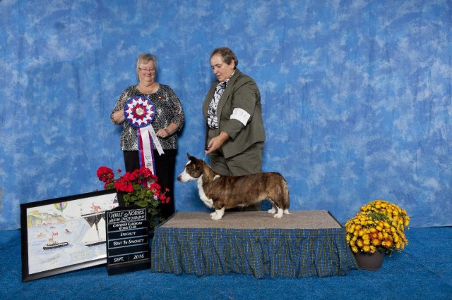 jolene-best-in-specialty-best-canadian-bred-small